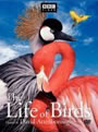The Life of Birds (DVD set)